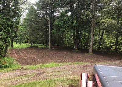 excavation-IMG-0162